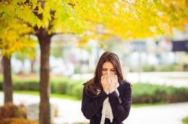 Allergies: comment le réchauffement climatique les amplifie