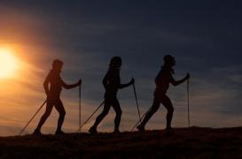 Bien-être, remise en forme, renforcement musculaire... : la marche nordique a ses avantages