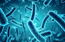 Impression 3D : des pièces pour réduire les bactéries et lutter contre les infections