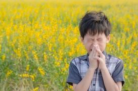 Le risque allergique chez l'enfant est sous-estimé par les parents alors qu'il est en augmentation