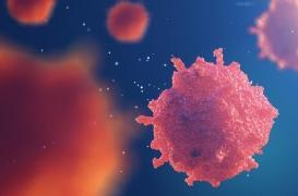 Lafora : une maladie génétique rare encore trop méconnue