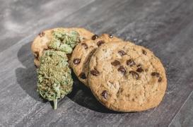 Le Canada légalise le cannabis comestible : quels impacts sur la santé ?