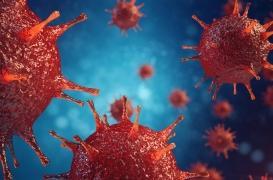 Pour la première fois, des chercheurs ont découvert où se cache le virus du sida