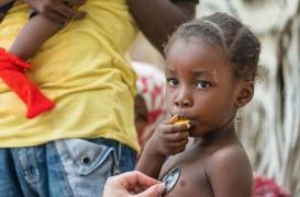 Ebola en RDC : la cellule souche à l'origine de l'épidémie enfin découverte par des chercheurs