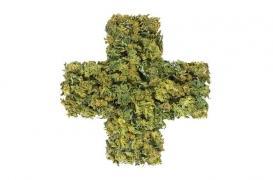 Cannabis thérapeutique : nouvelle entorse en vue sur la régulation des médicaments