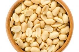 Un nouveau traitement contre les allergies aux arachides prévu pour 2019