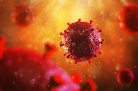 VIH : une exposition continue au sperme diminuerait le risque d'infection chez les femmes