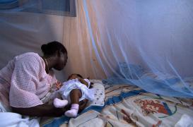 Paludisme : la France détient le record de cas importés
