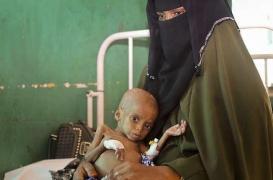 Famine : un youtubeur lève près de 2 millions d'euros pour la Somalie
