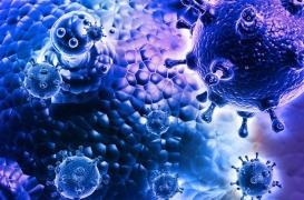 La mortalité associée à la grippe est très largement sous-estimée