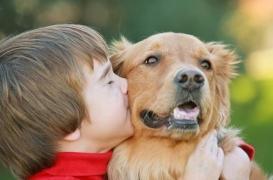 Animaux domestiques : les bienfaits pour la santé des enfants remis en cause