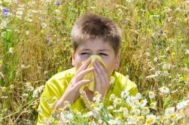 Prédire l'asthme et les allergies alimentaires dès 1 an
