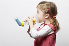 Asthme : une levure augmente les risques chez l'enfant