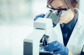 Endométriose : où en est la recherche ?