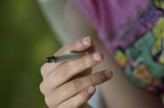 Cannabis : une consommation régulière réduit les chances de finir sa scolarité