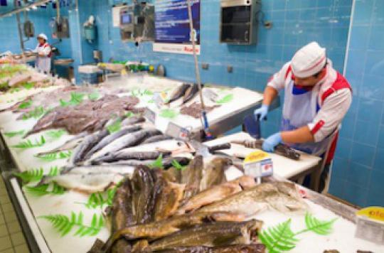 Filets de poissons : non-conformité dans 20 % des cas