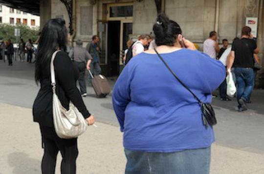Enrichir la flore intestinale pour combattre l'obésité