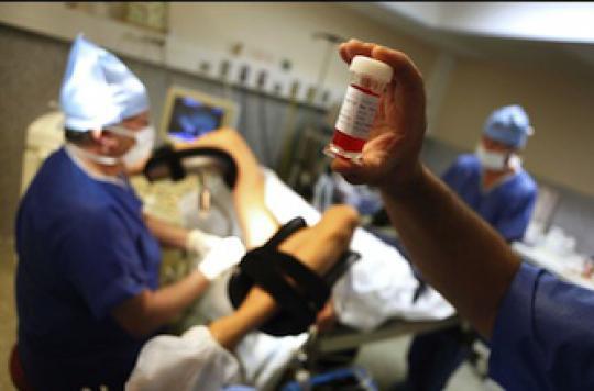 FIV : un traitement par ibuprofène améliore le résultat