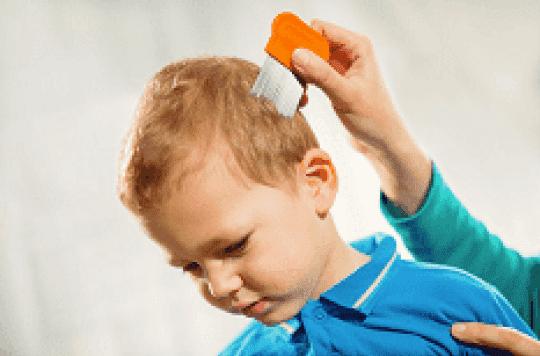 Attention aux huiles essentielles de lavande et d'arbre à thécontre les poux