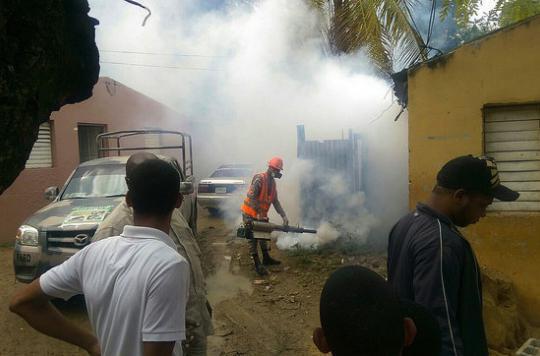 Dengue : 184 cas recensés à la Réunion