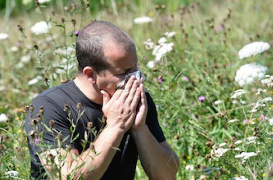 Allergies: les nouveaux traitements améliorent  l'observance