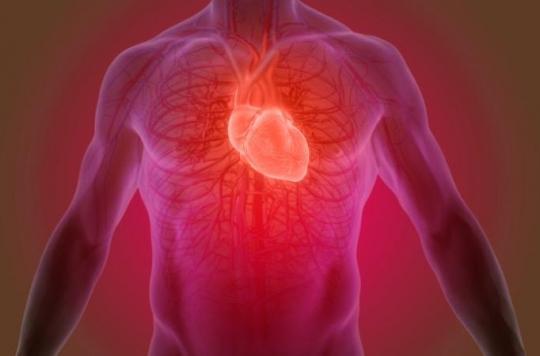 Les enzymes cardiaques, des indicateurs de la santé du coeur