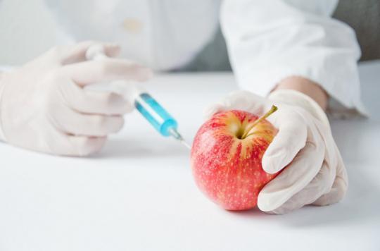 Des OGM mutants au coeur d'une polémique