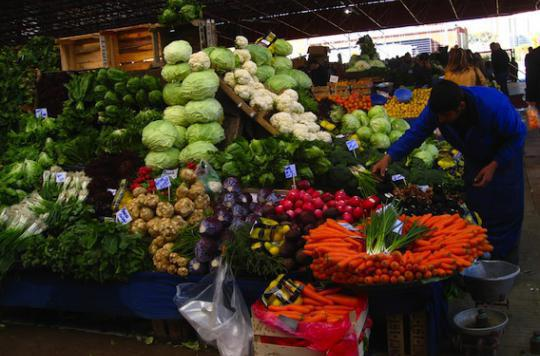 Les végétaliens s'exposent à des  carences nutritionnelles