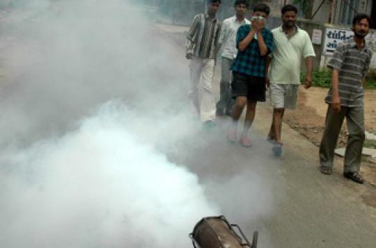 Cancer : l'insecticide malathion suspendu en Guyane