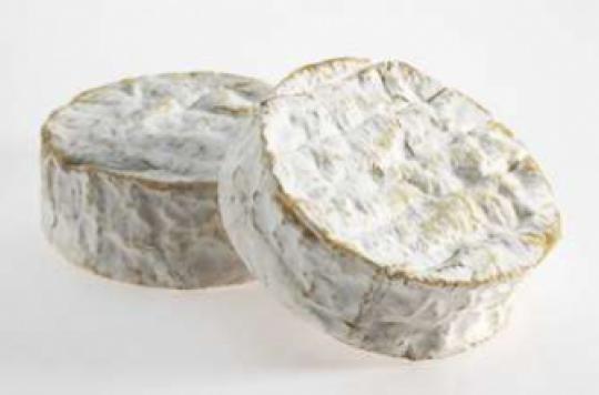 Bactérie E. Coli : un camembert de Normandie retiré des rayons