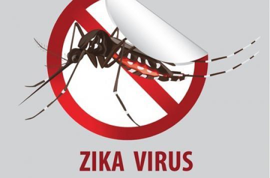 Zika : la ministre des Outre-mer appelle à la mobilisation