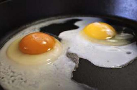 Trop de protéines au dîner réduisent la masse musculaire
