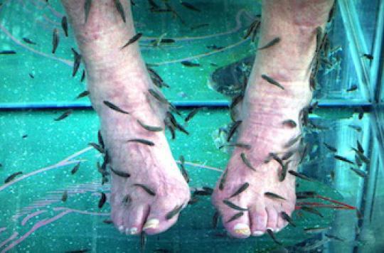 Six nouvelles publicités interdites pour la fish pédicure