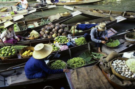 La maladie d\'Asie : mystérieuse mais pas contagieuse