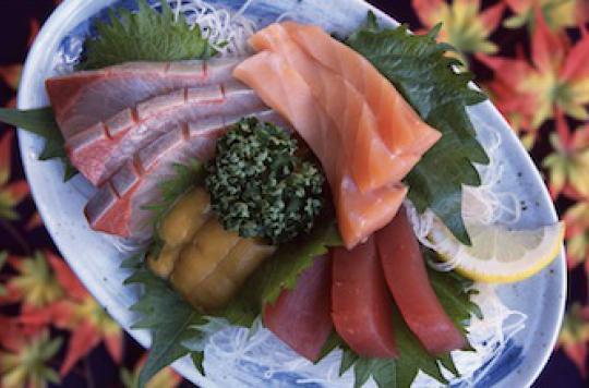 Alerte sur les poissons gras : à consommer avec modération