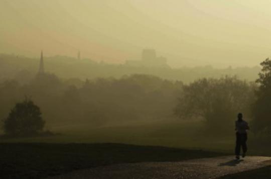 Pollution à l'ozone : comment se préparent les 3 départements