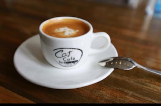 Plus de café pour moins de diabète ?