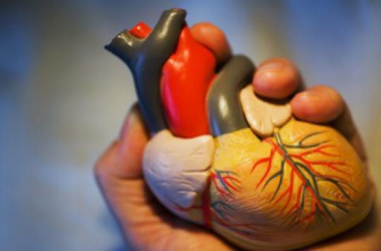 Un calculateur évalue l'âge de votre cœur sur Internet
