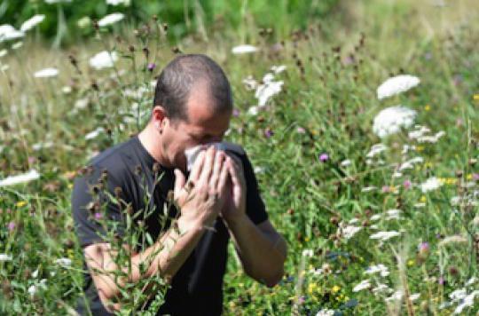 Allergies : qui consomme le plus de médicaments ?