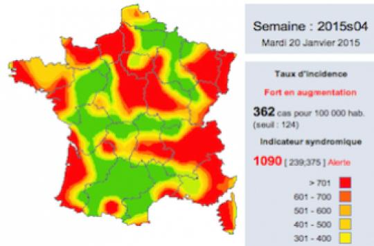 Grippe : la carte des régions les plus touchées par l'épidémie