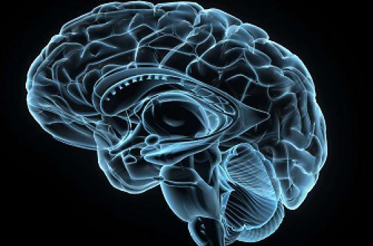 L'Académie de médecine lance un appel au don de cerveau