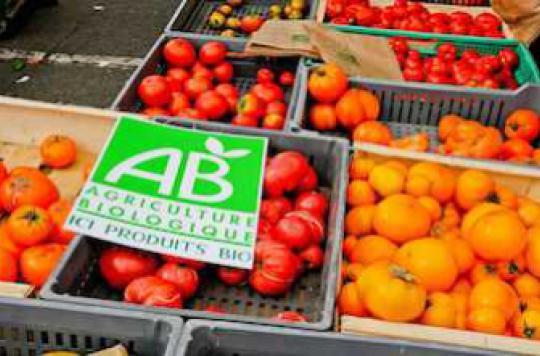 Nutrition : les aliments bio contiennent plus d'antioxydants