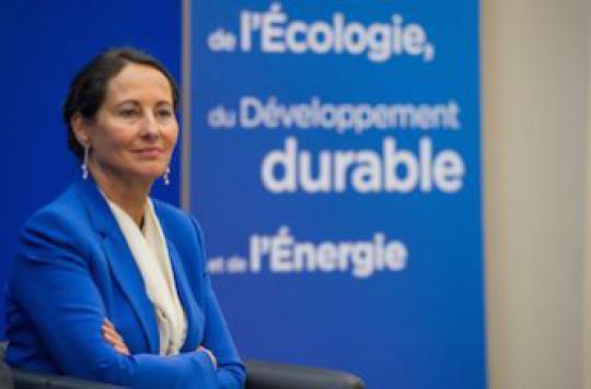 Plan environnement : Ségolène Royal traque les allergisants