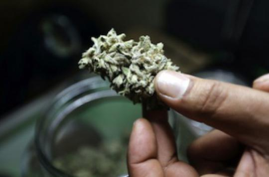Bertrand Rambaud condamné pour usage thérapeutique de cannabis