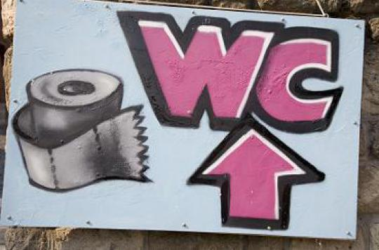 2,5 milliards de personnes n'ont pas accès à des toilettes propres