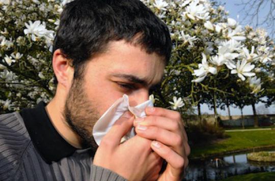 Allergies : la moitié de la planète concernée dans 15 ans