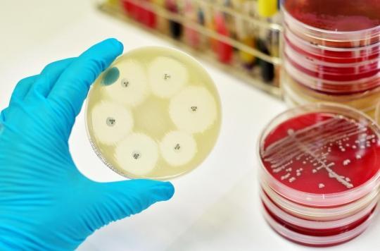 Pourquoi les antibiotiques doivent se réinventer