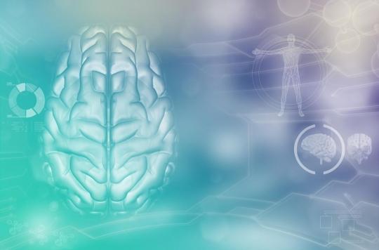 Maladies neurodégénératives : et si l'on pouvait faire « repousser » les neurones ?