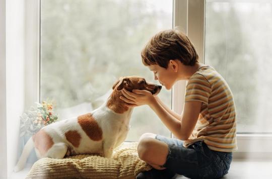 Comment expliquer à un enfant la mort de son animal de compagnie