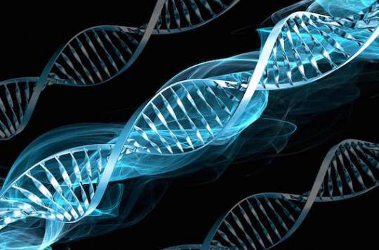 Cancers d'origine génétique : les Français veulent en savoir plus